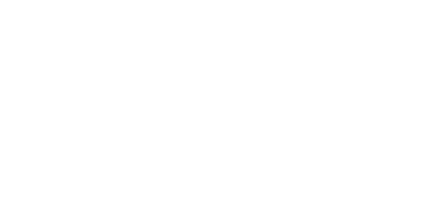 XIII International Tinnitus Seminar II World Tinnitus Congress